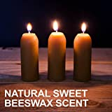 UCO 12-Hour Natural Beeswax Candles Candle