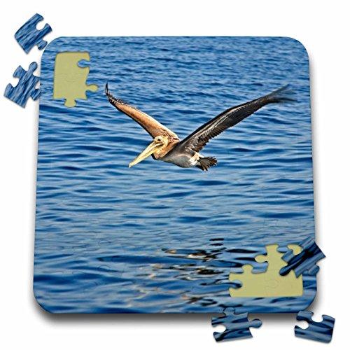 Boehm Birds Game (3dRose Boehm Photography Bird - A Brown Pelican Off The California Coast - 10x10 Inch Puzzle (pzl_282326_2))