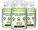 100% Pure 95% HCA Genuine Garcinia Cambogia Plus, Healthy Appetite Suppressant for Natural Weight Loss & Detox Diet. Plus Energy & Focus Booster – 100% Natural Supplement Extract. 3 Pack