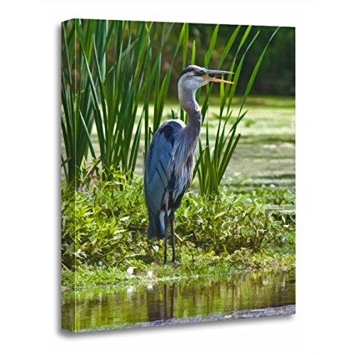 - TORASS Canvas Wall Art Print Gray Birds Great Blue Heron Animals Artwork for Home Decor 12