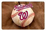 MLB Washington Nationals Baseball Pet Mat