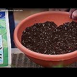 Coast of Maine - Platinum Grower's Mix, Super Soil, Stonington Blend, 1.5cf