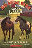 A Sassy Surprise, Kristin Earhart, 0439900956