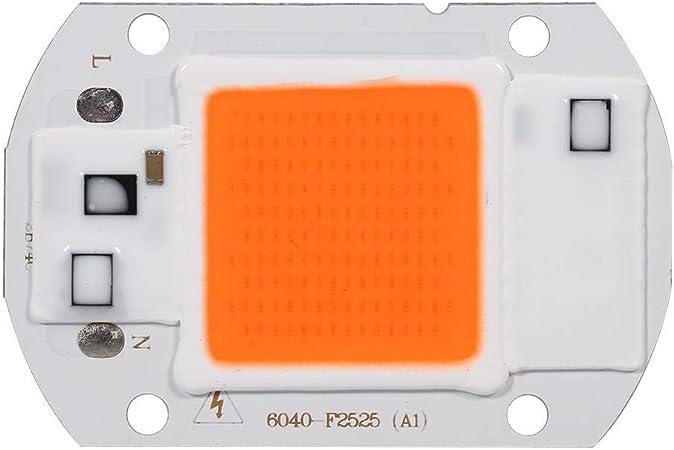 20W 30W 50W Vollspektrum LED COB Chip Lampe für Wachstumslampe Grow Light 220V
