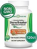 100% Pure Chanca Piedra (Stone Breaker) Supplement – 500mg X 100 Capsules (Vegan) – Amazon Rainforest – Gluten-free – Non-GMO (1-Pack)