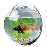 Mirror Face Style Acrylic Round Wall Mounted Hanging Fish Bowl Aquarium Tank ...