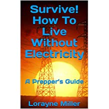 Survive! How To Live Without Electricity : A Prepper's Guide