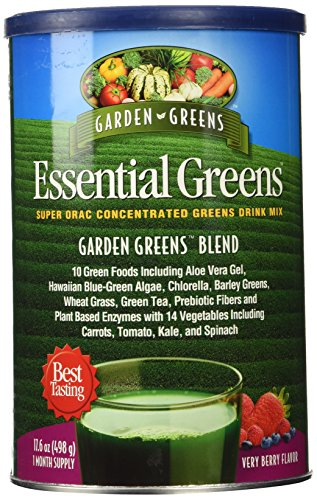 Essential Greens Drink Mix by Garden Greens - 17.5oz. Powder(Flavors=Very ()