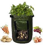 Potato Grow Bag/Vegetable Grow Bag 10 Gallon - 2 Pack by LucDom Basics