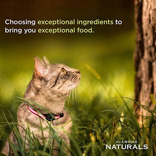 Diamond Pet Foods INDCAT18 Naturals Comida seca para gatos adultos, fórmula de pollo con control de bolas de pelo para interiores, bolsa de 18 libras 4