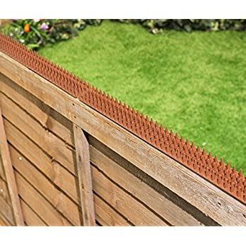 Amazon.com : Cat Repeller Fence and wall spikes - strip of