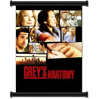 Amazon.com: Grey\'s Anatomy Season 1 TV Show Fabric Wall Scroll ...