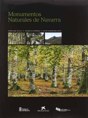 Descargar Libro Monumentos Naturales De Navarra Fermin Olabe Velasco