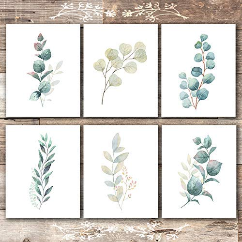 Botanical Prints Wall Art - Eucalyptus Leaves - (Set of 6) - Unframed - - Bathroom Art Print