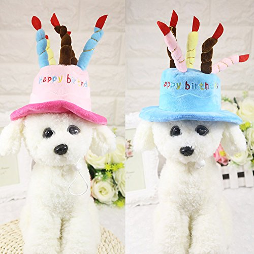 luckyBEAR Birthday Party Hat Lace Cap Holiday gifts for Pet Cat Dog Festive Dress Up Party Costume Accessory (Festive Costume)