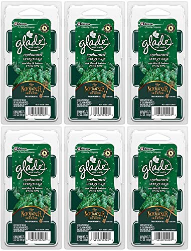 Glade Wax Melts Air Freshener - Holiday Collection 2018 - En