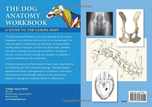 Dog Anatomy Workbook A Guide To The Canine Body Andrew Gardiner