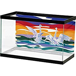 bybyhome Reptile Aquarium Background Swan,Funky Style Image of Swan Couple Swimming in Sea Rainbow Color Sky Backdrop Modern Print,Multi Adhesive Underwater