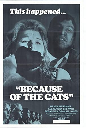 because of the cats full movie