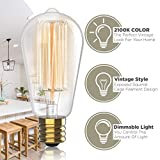Hudson Vintage Incandescent 6W Edison Light Bulbs