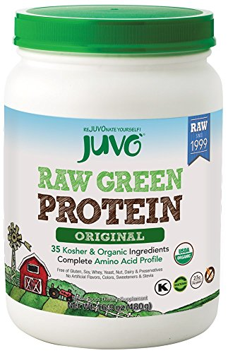 JUVO Raw Green Protein, 16.9 Ounce
