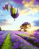 Paint by Numbers Kit for Adults - Air Balloon | DIY