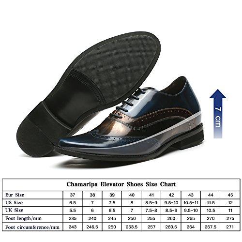 CHAMARIPA Scarpe con Rialzo Eleganti Oxford Uomo di Pelle per Tempo Blu/Oro Commerciali Fino a 7 cm - H81D38D061D blu