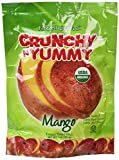 Crunchy N Yummy Organic Freeze Dried Fruit Mango (Pack of 6)
