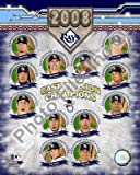 Tampa Bay Rays 2008 AL East Champs 8x10