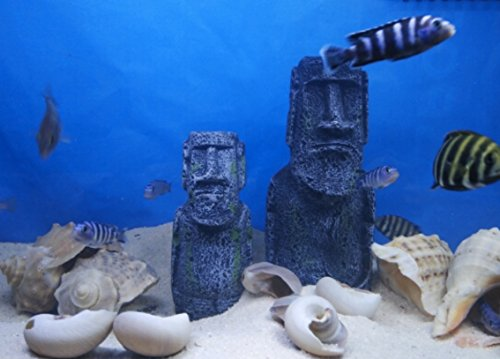 Niteangel ancient easter island stone head aquarium for Moai fish tank