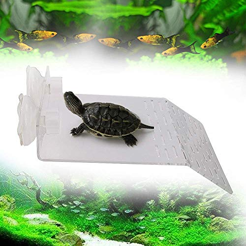 (HelloPet Turtle Resting Terrace Nizzco Large Size Acrylic Plastic Fish Tank Aquarium Tortoise Basking Platform with 2PCS Suction Cups (9.2 inch 7.8 inch))