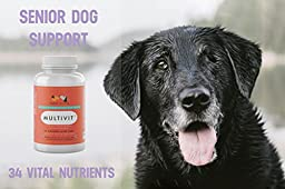 Best Dog Vitamins – #1 Multivitamin For Senior Dogs - Nutrients, Calcium, Digestive Enzymes & Antioxidants – Chicken Liver Chewable Supplements – 60 Count