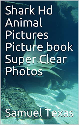 Shark Hd Animal Pictures Picture book Super Clear Photos