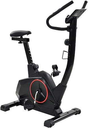 Festnight Bicicleta Estática con Pantalla LCD y un Soporte para ...