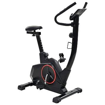 vidaXL Bicicleta Estática XL Masa de Rotación Pulso Maquina ...