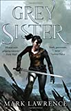 Grey Sister (Book of Ancestor 2)