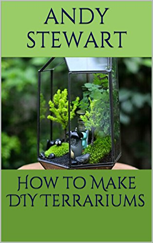 How To Make Diy Terrariums Kindle Edition By Andy Stewart Crafts