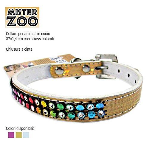 1 opinioni per Mister Zoo Collare per Cani Cuccioli