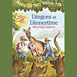 Magic Tree House, Book 20