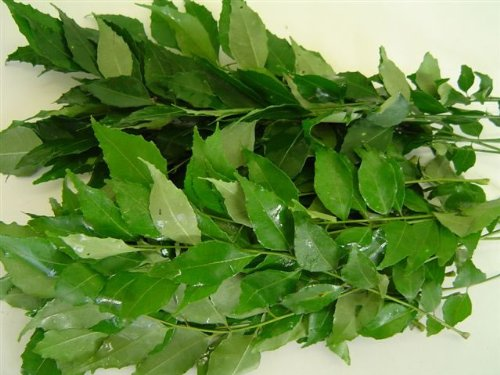 Fresh Curry Leaves (Hawaii) 1 Oz ()