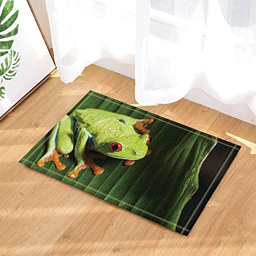 - GoHeBe Reptile Decor Funky Frog with Big Eyes on Leaves Bath Rugs Non-Slip Doormat Floor Entryways Indoor Front Door Mat Kids Bath Mat 15.7x23.6in Bathroom Accessories