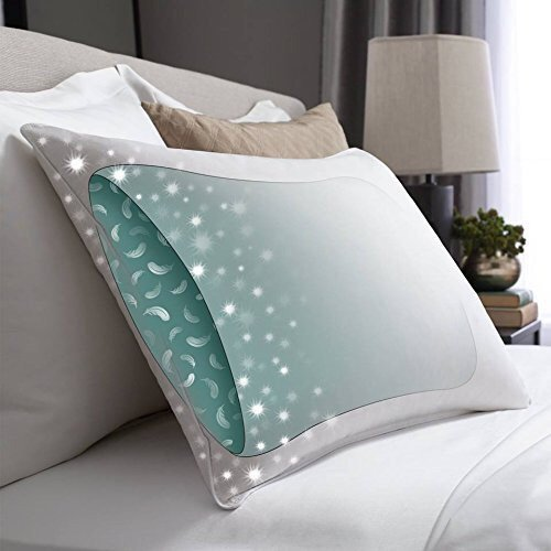 Pacific Coast Feather Co. ® Touch of Down ® Standard Size Two (2) Pillow Set Featured in Many Hotels and Resorts. Usually ships within 1-3 business days unless there is a problem.