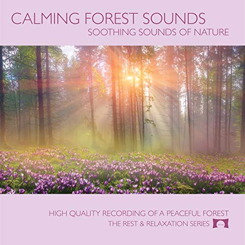 - Calming Forest Sounds - Nature Sounds Recording - For Meditation, Relaxation and Creating a Soothing Atmosphere - Nature's Perfect White Noise -