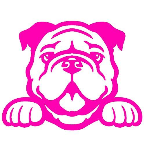 "Bulldog Peeking V1 Vinyl Decal by StickerDad - size: 5"", col"