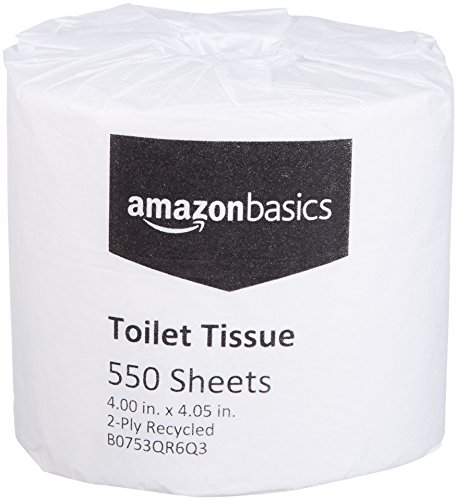 Basic Bathroom Tissue - AmazonBasics Professional Economy Toilet Tissue for Businesses, 2-Ply, 550 Sheets per Roll, 80 Rolls