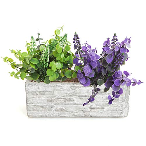 Gray Cement Rectangular Succulent Plant Flower Pot/Decorative Kitchen Herb Garden Planter ()