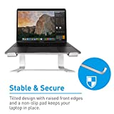 """Macally Aluminum Laptop Stand for Desk - Works with all Macbook /Pro/Air & Laptops between 10"""" to 17.3"""" - Sleek and Sturdy Laptop Riser - (ASTAND), Silver"""