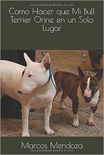 Como Hacer que Mi Bull Terrier Orine en un Solo Lugar (Spanish Edition): Marcos Mendoza: 9781983279010: Amazon.com: Books