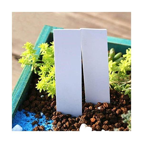 XD E-commerce Etichette vegetali per Erbe Impianto di plastica Riutilizzabile Etichette vegetali per Fiori Etichette per… 3 spesavip
