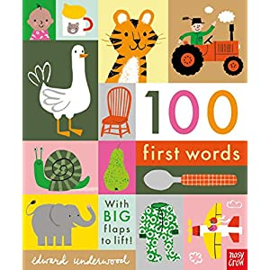 100-First-Words-With-BIG-flaps-to-lift-Board-book--4-July-2019